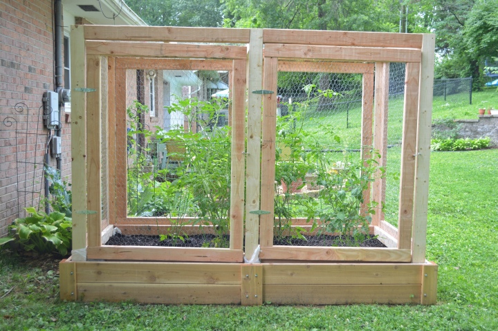 We Built an Enclosure for My Raised Bed to Protect the Tomatoes from Squirrels