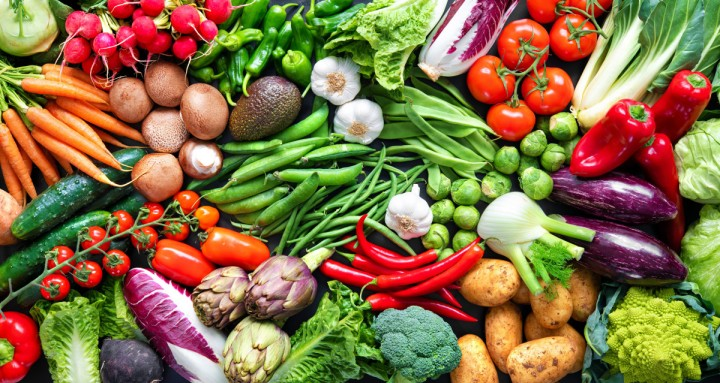 What is a Plant-Based Diet? QuestionsAnswered